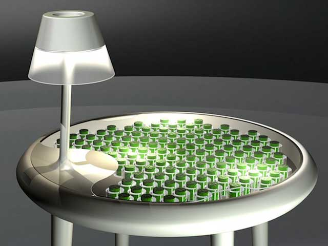 Moss Table by Alex Driver and Carlos Peralta