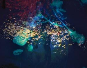 Gremlins cover by Patrick Jeffords himself