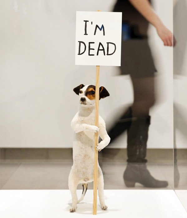 David Shrigley, I'm Dead (2010)