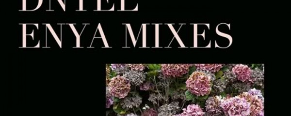 ENYA MIXES by DNTEL