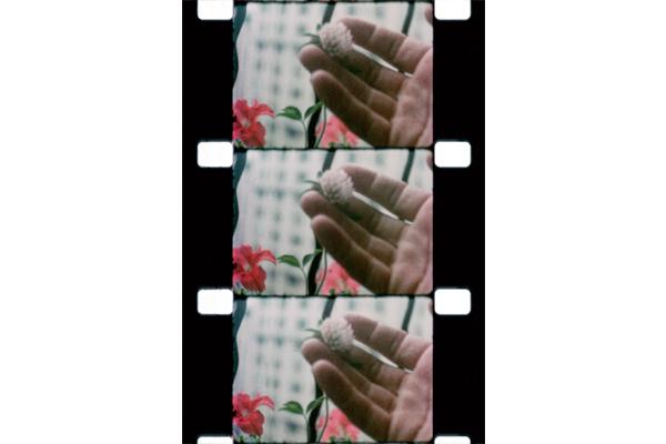 Jonas Mekas, 16mm Film Still. Image courtesy of Serpentine Gallery.