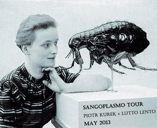 Sangoplasmo tour poster.