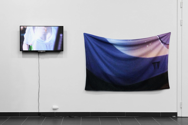 "Kari Altmann, ""Ttoshibaa- 10,000 Impressions"" (2009 - ongoing). Photo by Gunnar Meier."