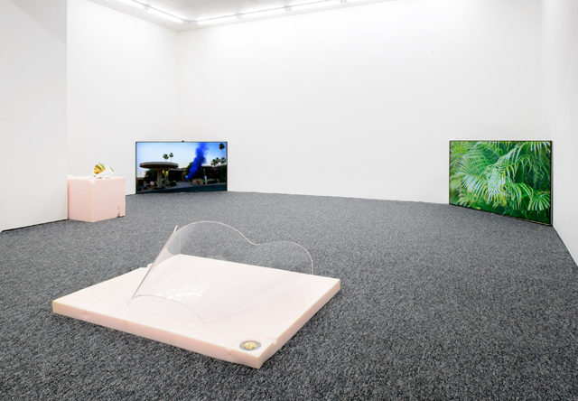 Andrew Norman Wilson, SONE exhibition view (2014). Courtesy PNI.