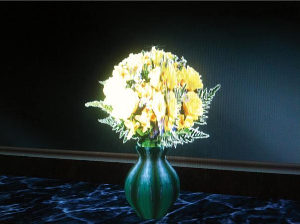 Sara Ludy, 'Bouquet' (2012).