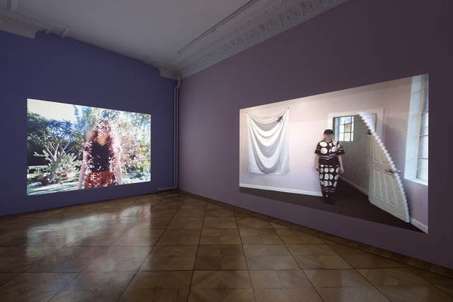 1Petra Cortright, Petwelt (2014) @ Société installation view. Courtesy the gallery.