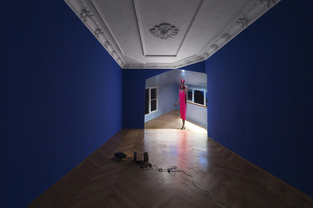 Petra Cortright, 'Main Bitch' Petwelt (2014) @ Société installation view. Courtesy the gallery.