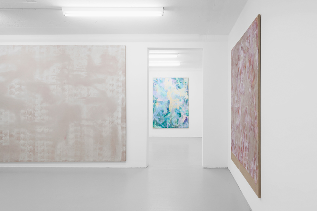 Tyra Tingleff, Closer Scrubs (2015) @ SALTS. Exhibition view. Photo by Gunnar Meier. Courtesy the artist.