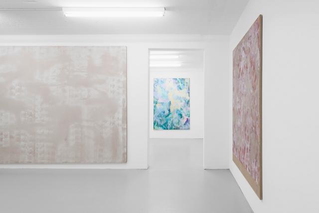 Tyra Tingleff, Closer Scrubs (2015) @ SALTS. Exhibition view. Photo by Gunnar Meier. Courtesy the artist.