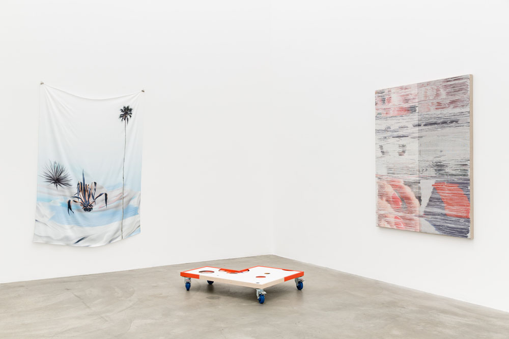 Catfish (2015). Exhibition view. Courtesy Anat Ebgi, Los Angeles.