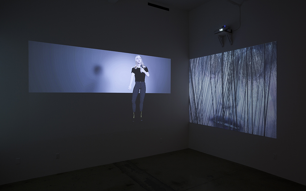 Casey Jane Ellison, 'It's So Important to Seem Wonderful Part II' (2015). Installation view. Courtesy Steven Turner Contemporary, Los Angeles.