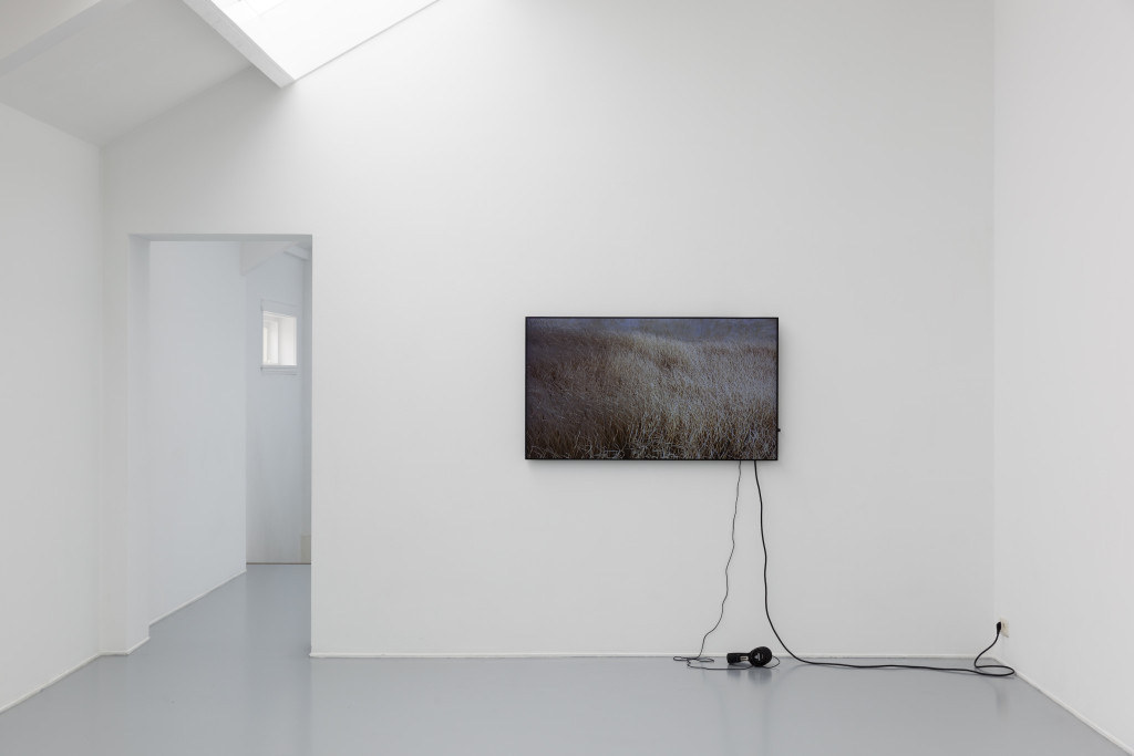 Rosa Aiello, 'Serving' (2015) @ Violent Incident (2015). Install view. Courtesy Vleeshal, Middelburg.