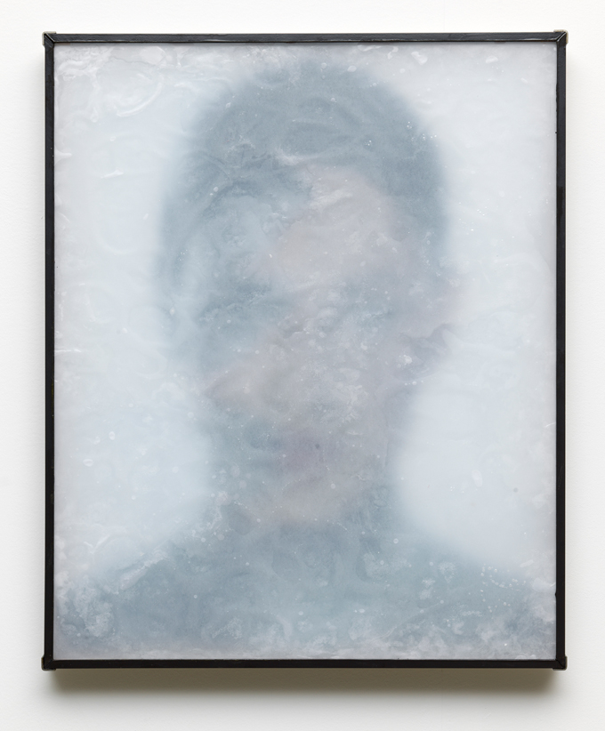 Lennart Lahuis, 'Fluid Skin' (2015). Courtesy the artist.