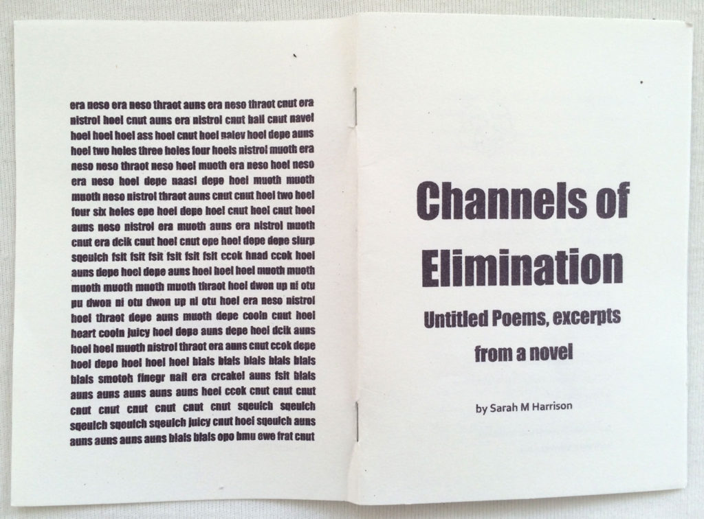 Sarah M Harrison, Channels of Elimination (2014). Published by Publishing Puppies, London.