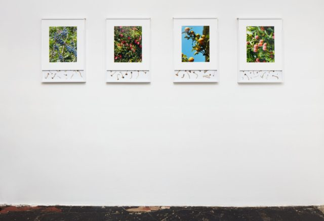 Brad Troemel, (2016). Installation view. Photo by Calle Tillberg. Courtesy the artist and LOYAL, Stockholm.