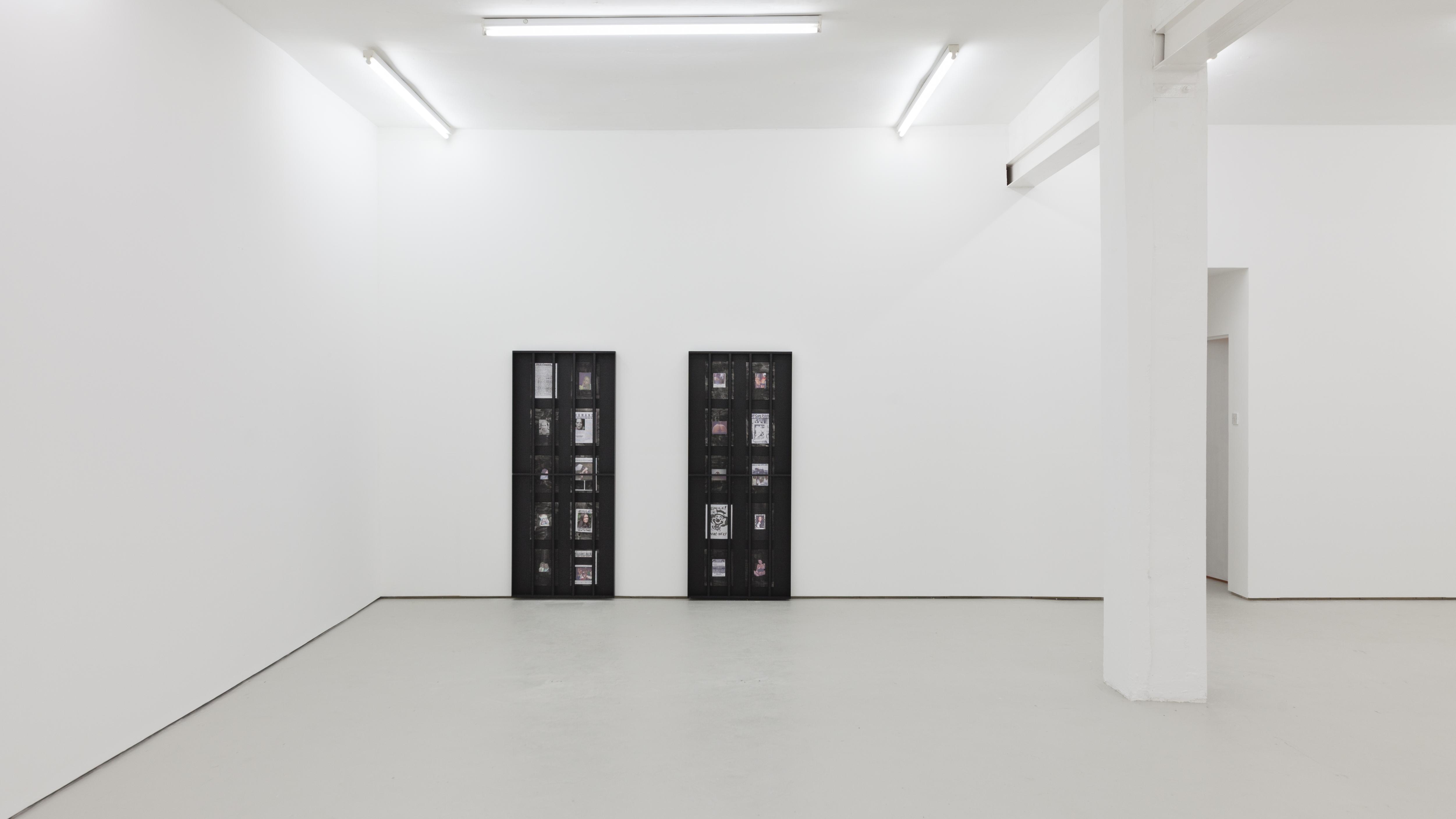 Darja Bajagić, Nobody Knows I'm Funny (2016). Installation view. Courtesy Carlos/Ishikawa, London.
