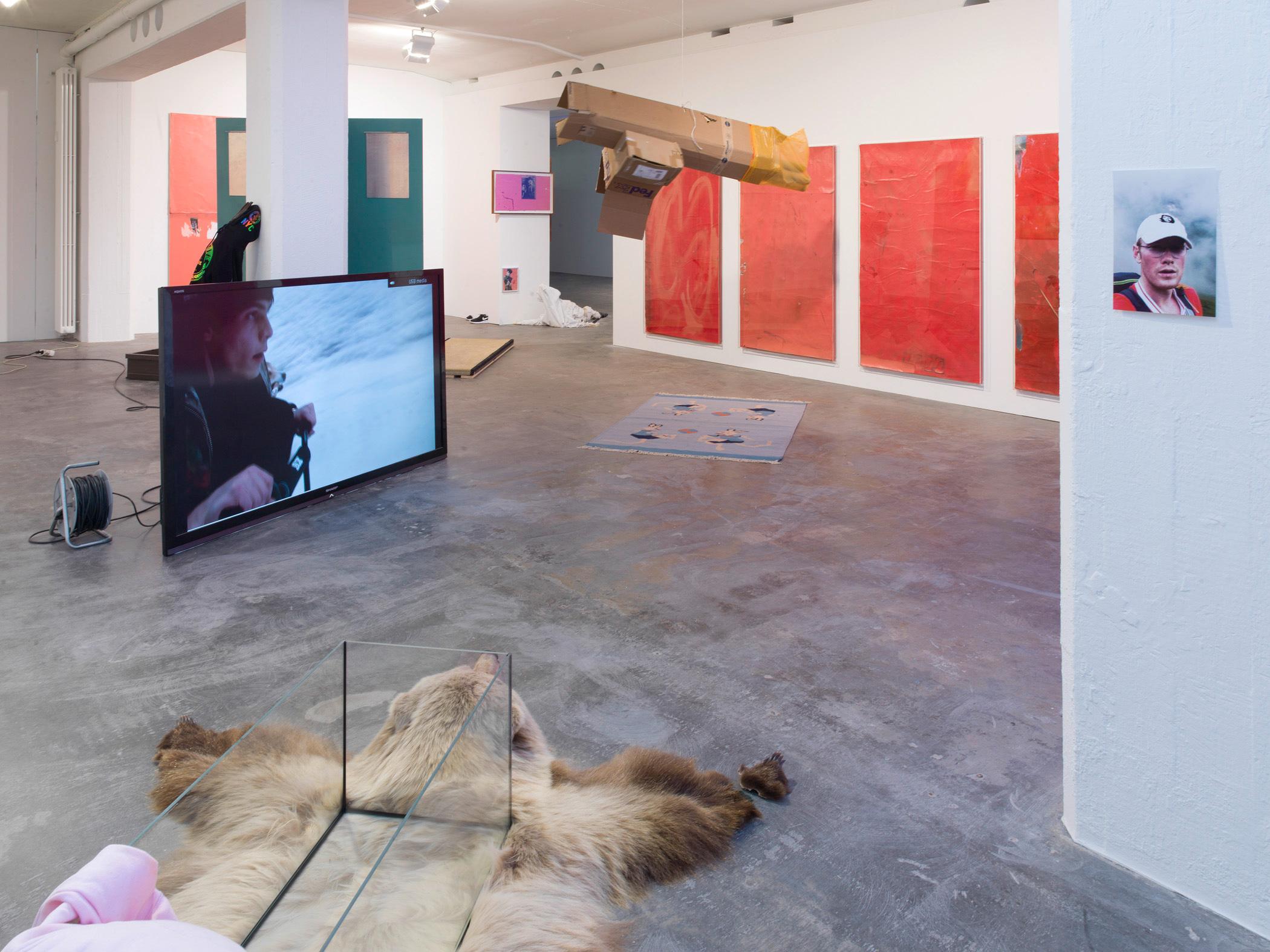 Yves Scherer, Single (2016). Exhibition view. Courtesy Galerie Guido W. Baudach, Berlin.